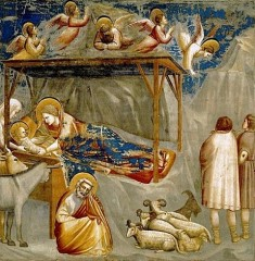 Giotto--Nativite.jpg