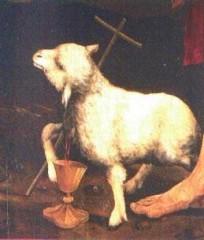 agneau10.jpg