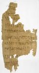 Hypo_ten_sen_eusplanchnian_(papyros).jpg