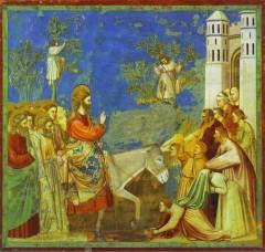 Christ entrant à Jéusalem (Giotto).jpg
